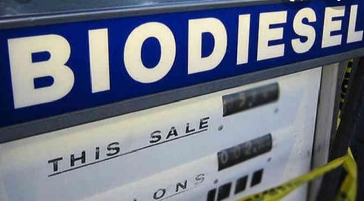 ગેરકાયદેસર બાયોડીઝલ વેચાણના કુલ-૨૫૦ ગુનાઓ દાખલ કરી કુલ-૪૧૪ આરોપીઓની ધરપકડ.